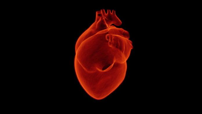 Zawał serca – co warto o Nim wiedzieć