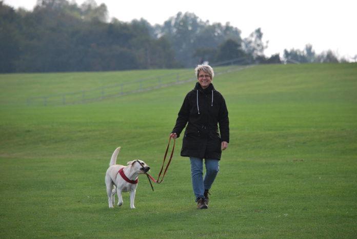 Jak szukać opiekunki do osoby starszej